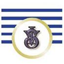 vsi_logo